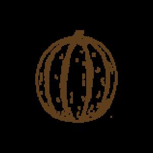 carduus-carciofo-amaro-brindisi-acquistaonline-artigianale